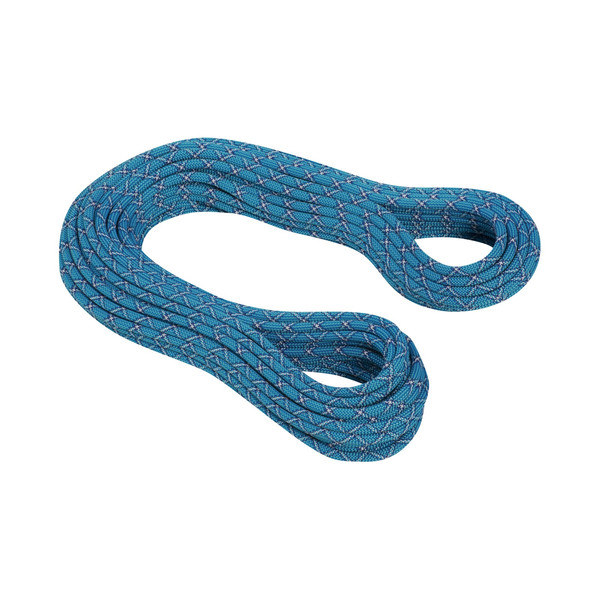 Mammut 9.5 Infinity Protect - Kletterseil