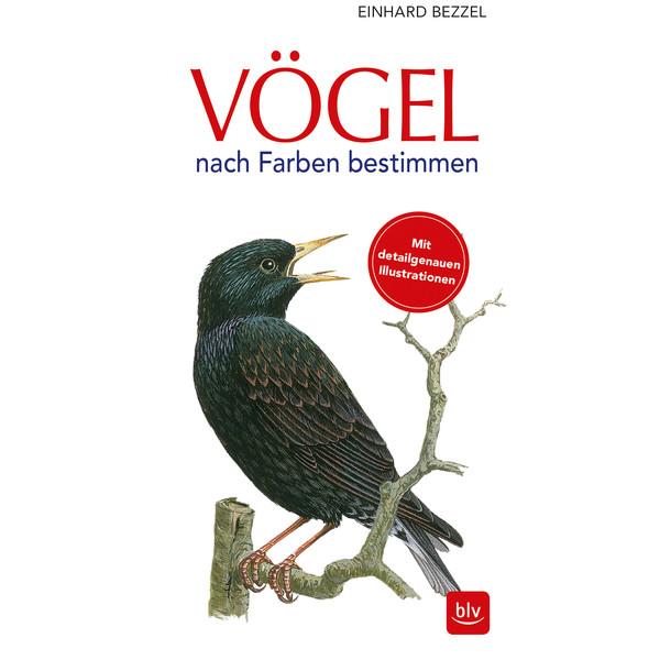 Maggiolina Airtop Vögel