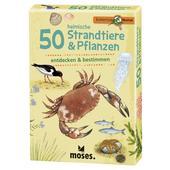 50 heimische Strandtiere & Pflanzen