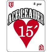 Vision ACE LEADER 15  -