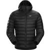 Arc'teryx CERIUM LT HOODY MEN' S Herr - BLACK